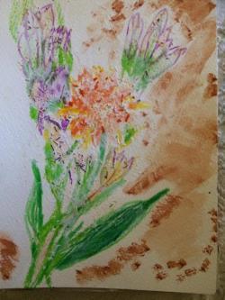 Picturi in creion / carbune Flori