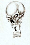 Picturi in creion / carbune Skull