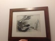 Picturi in creion / carbune Desen cap de leu