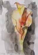 Picturi in creion / carbune Cala 3