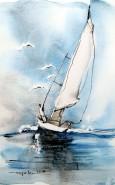 Picturi acuarela Aripi