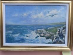 Picturi maritime navale Albatros 1