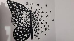 Picturi murale fluturi