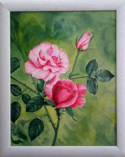Trandafiri 40 cm / 50 cm